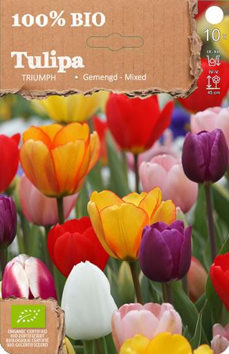 tulpe triumph mischung kologisch kaufen g nstig bestellen f r. Black Bedroom Furniture Sets. Home Design Ideas