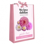 We Love Dahlias - Pink Love